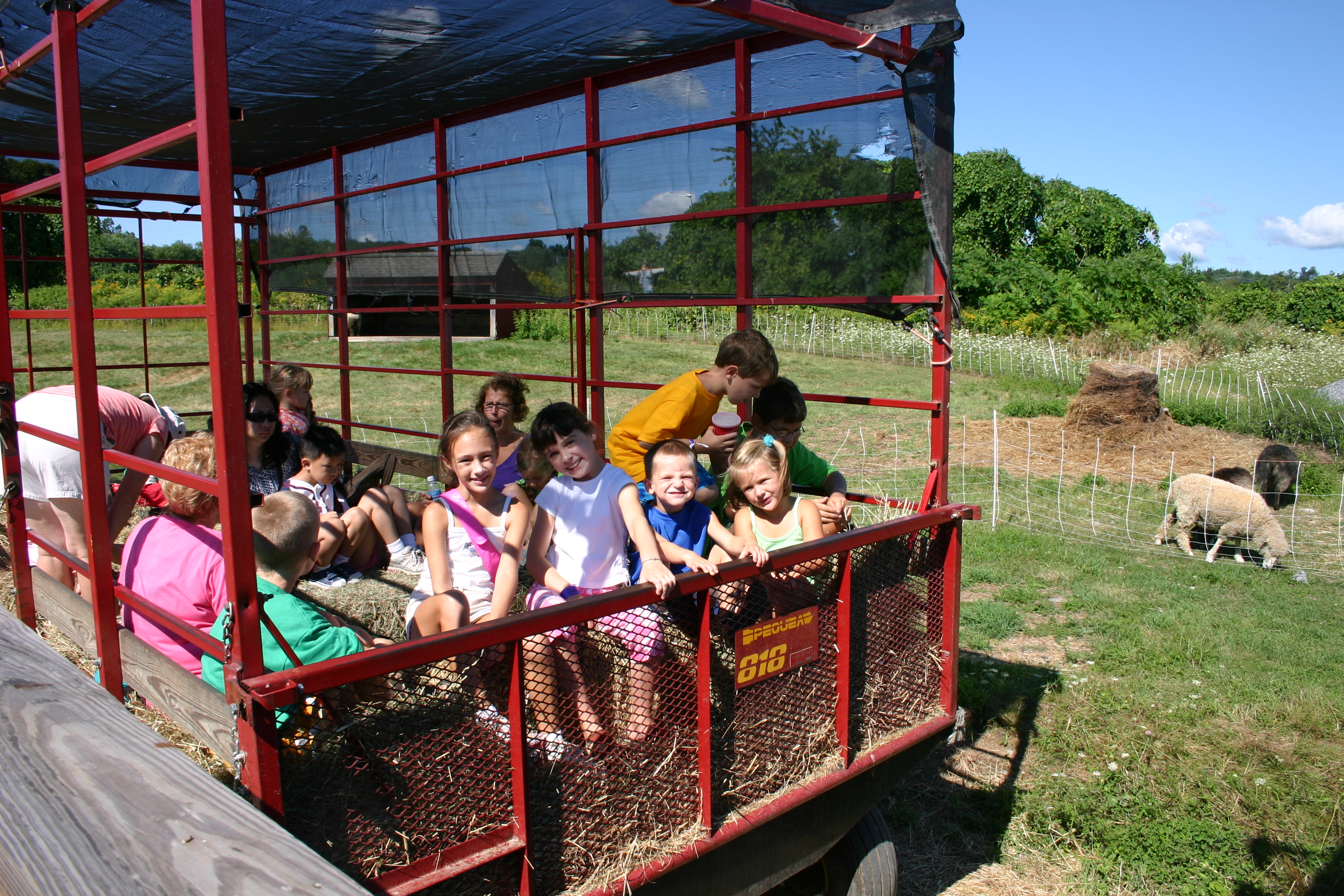 Davis Farmland is OPEN today from 9:30 – 6 with last admission at 4:30.