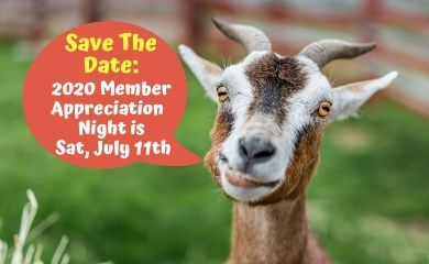 Save The Date_